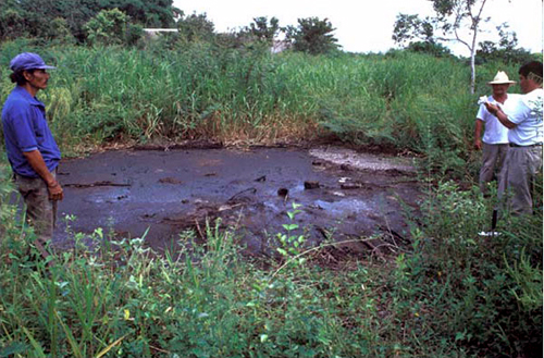Bitumen Seepage at Emilio Carranza - © Foundation for the Advancement of MesoAmerican Studies Inc.