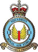 1 Squadron RAF