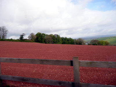 Devon Red Earth