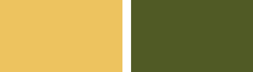 Gold Colour and Olive Colour