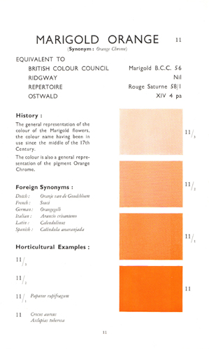 Wilson Colour Chart - Marigold Orange