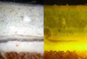Stowe - Sample under Plain & UV Light