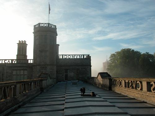 Castle Ashby Morning